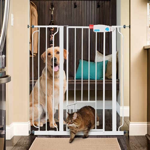 Carlson Pet - Gate Extra Tall 6""