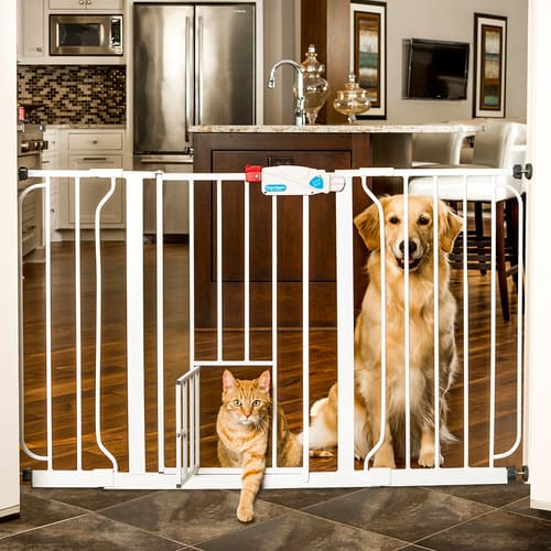 Carlson Pet - Extra Wide Gate 52""