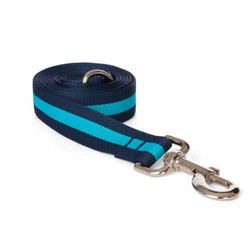 Fab Dog - Classic Stripe Dog Lead Blue