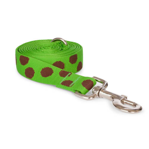 Fab Dog - Polka Dot Dog Lead Green