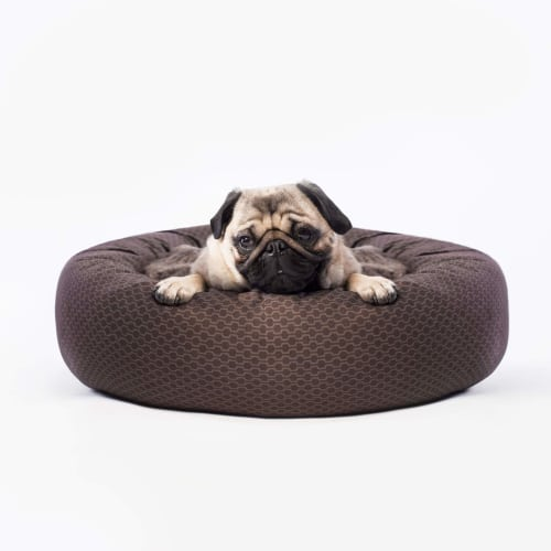 Canada Pooch - Birch Bed Copper Brown