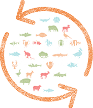 rotate protein every 3 months
