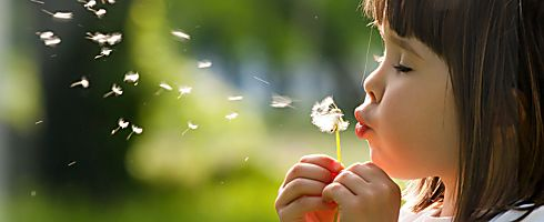 Allergy & Hay Fever - Nasal/Hay Fever Sprays