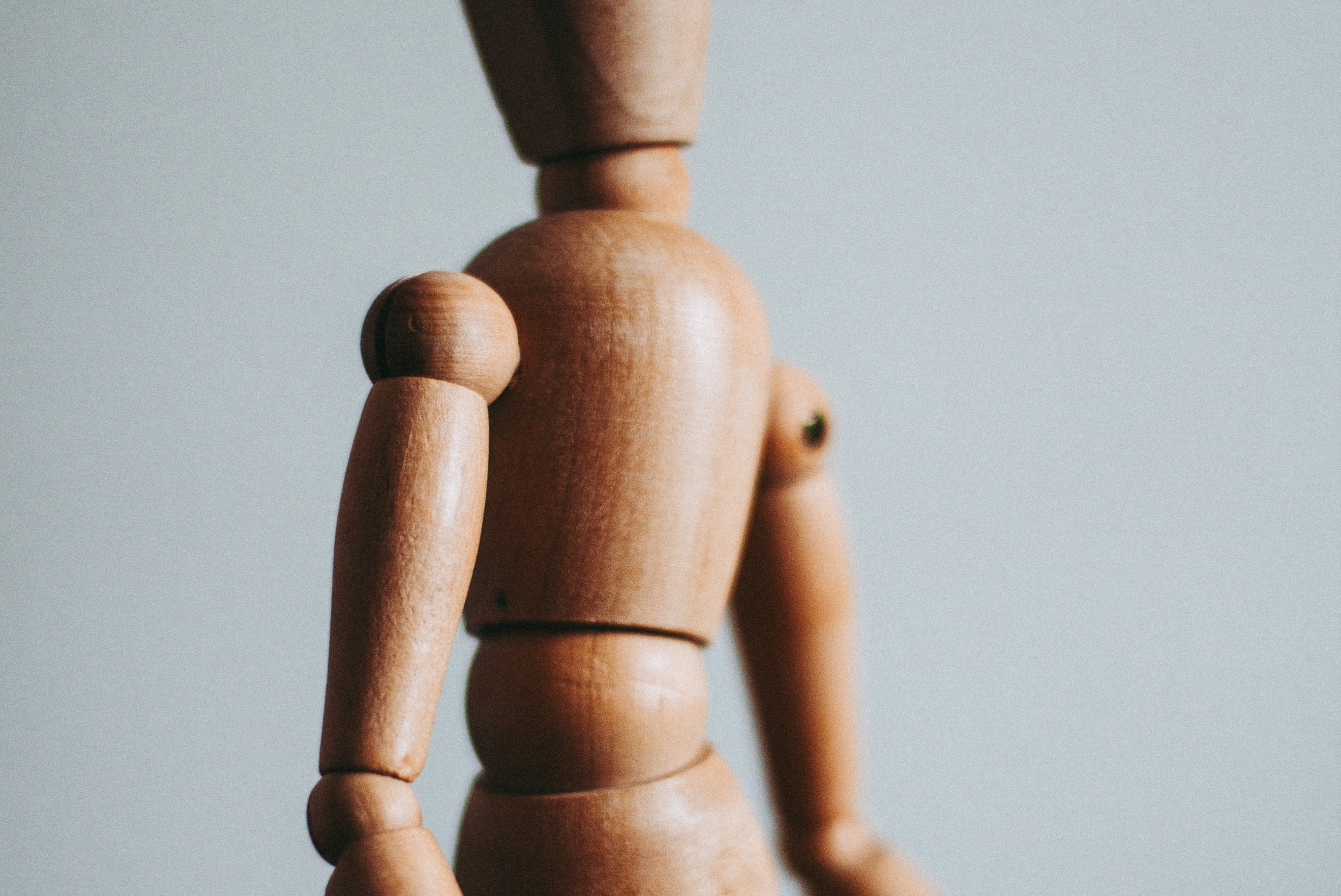 Wooden body parts model