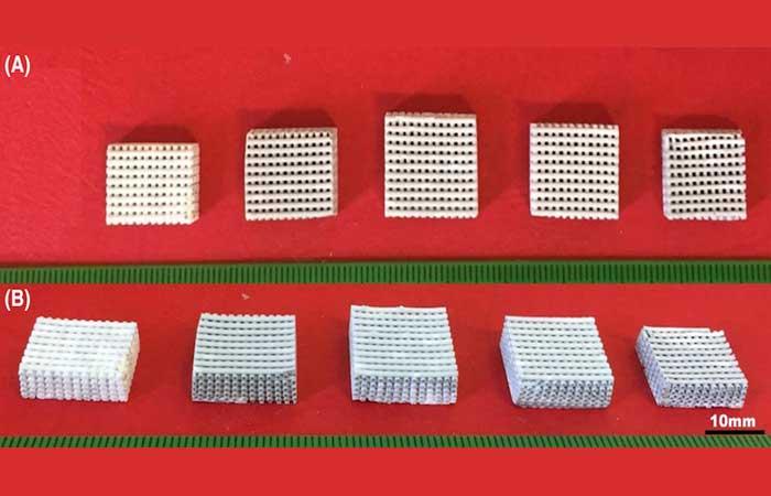 Material bioativo por impressão 3D
