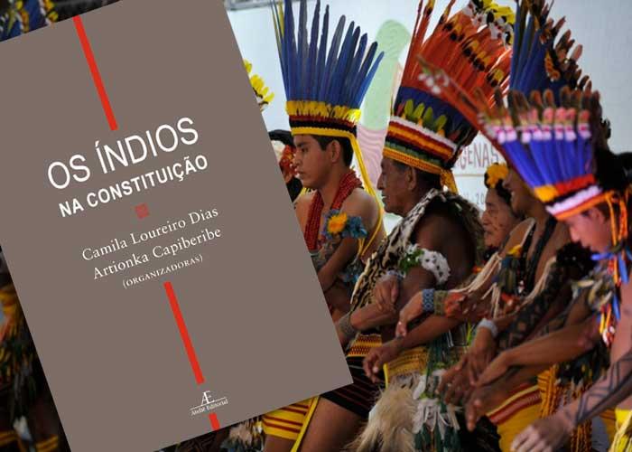 Indígenas na Constituição brasileira