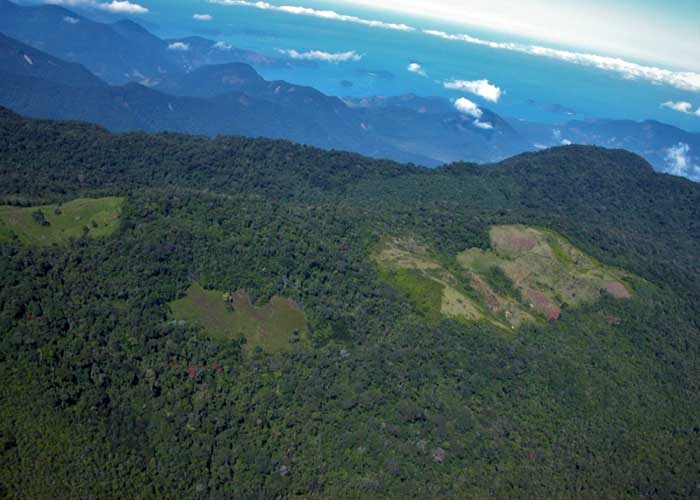 Desmatamento promove aquecimento