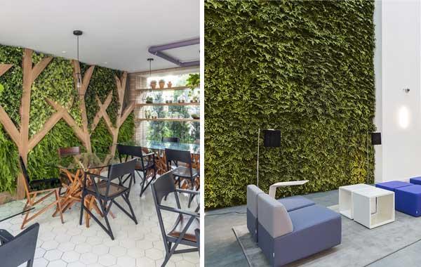 Quatro principais tipos de jardins verticais