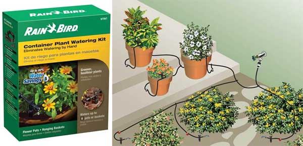 Regatec lança sistema de irrigação para pequenos jardins