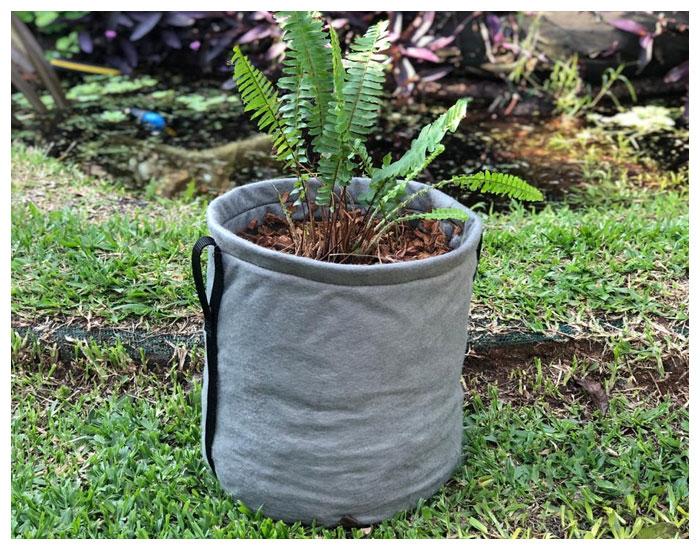 Ecobags para cultivo em pequenos espaços