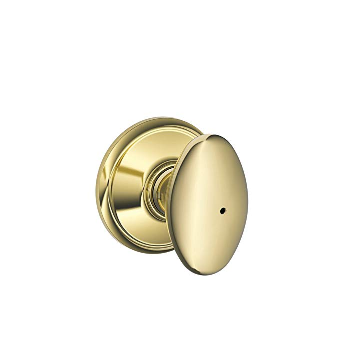 An image related to Schlage F40VSIE605 Privacy Brass Biometric Lock