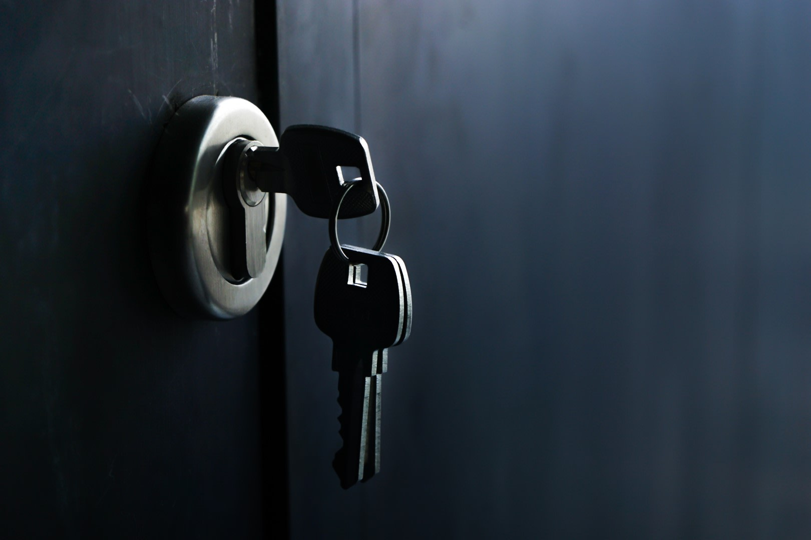 An image related to Entry Locks from Master Lock Review