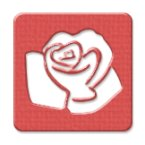 Picture for category Roses