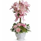 Blushing Lilies (Standard)