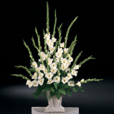 White Gladiolas Pedestal Arrangement