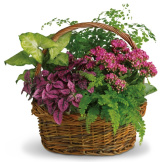 Secret Garden Basket (Standard)