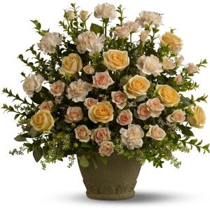 Rose Remembrance