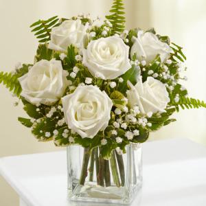 Love's Embrace Roses – White