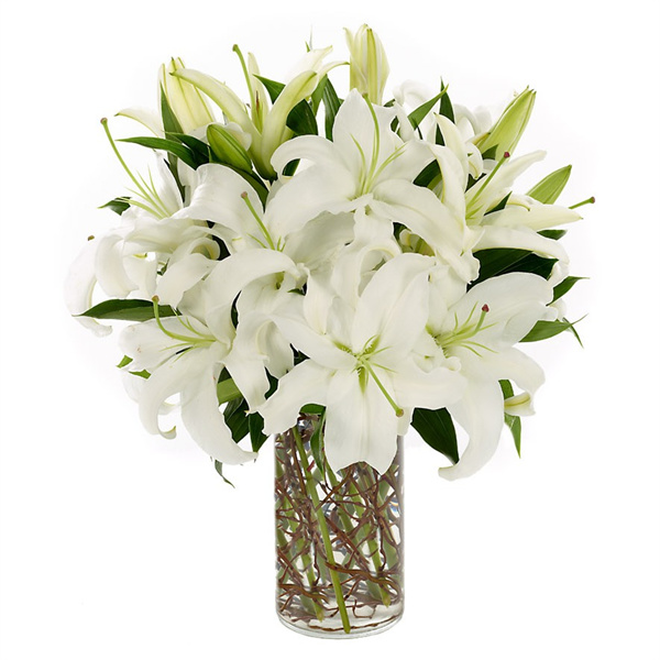 Simply Lily Vase Arrangements The Sympathy Store