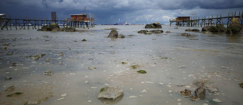 Journée photographique sur l'estuaire de la Loire