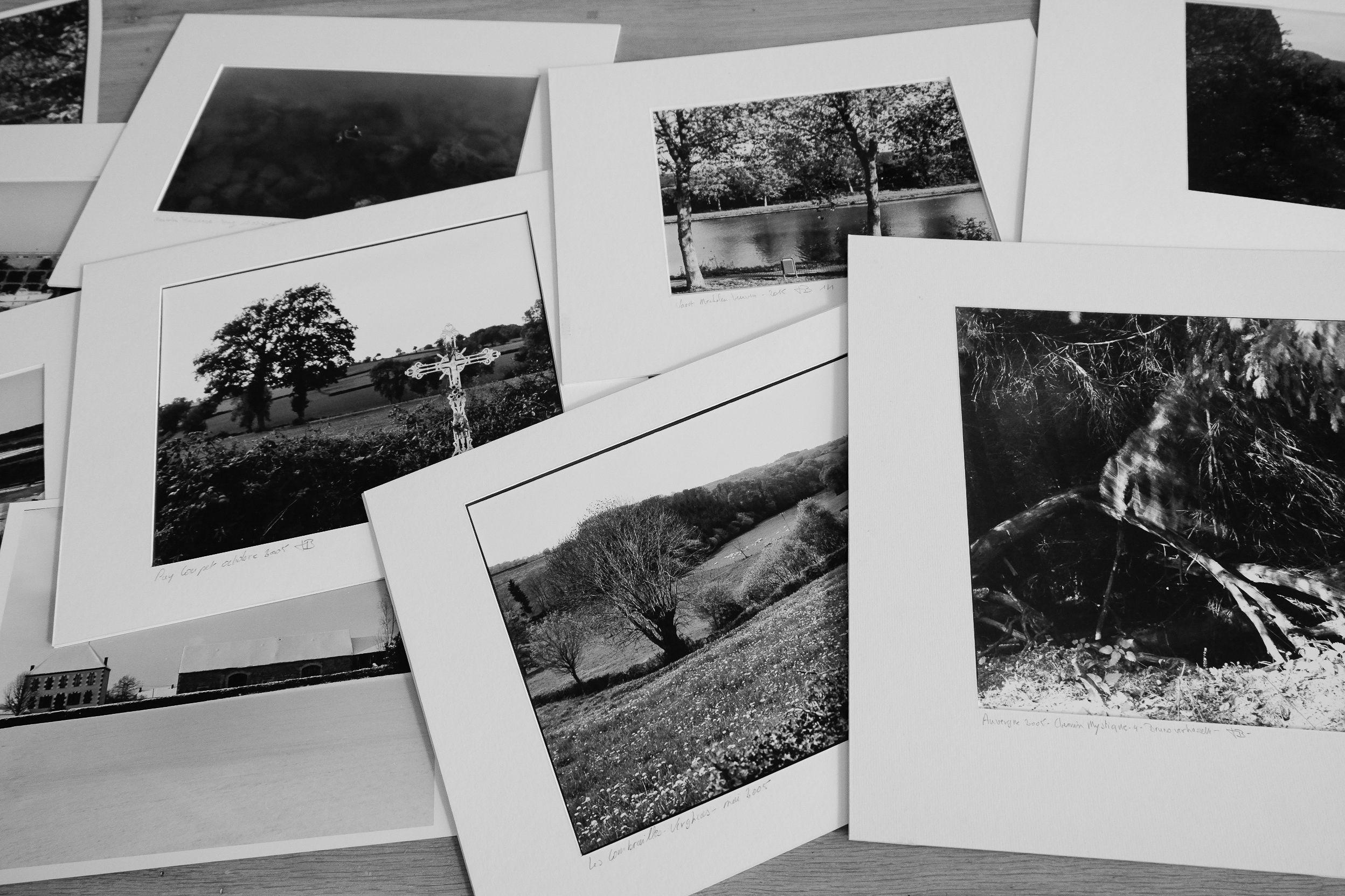 Fotoreview en tentoonstelling