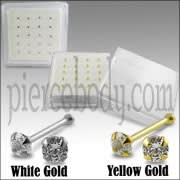 9K Gold Ball End Nose Pins in Mini Box
