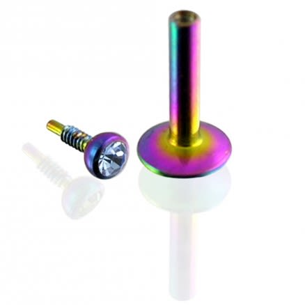 Rainbow Anodized Madonna Labret