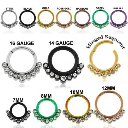 9 CZ Stones Paved Hinged Segment Clicker Ring
