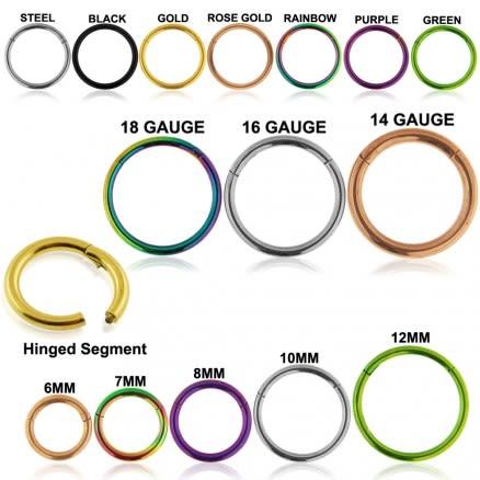 Titanium G23 Grade Hinged Segment Clicker Ring