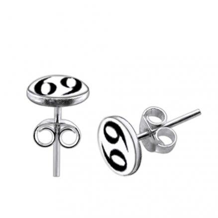 925 Sterling Silver 69 Logo Silver Earring