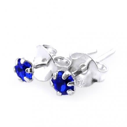 Fancy Jeweled Silver Ear Studs