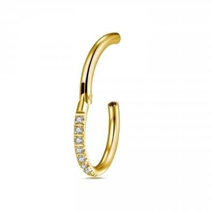 Titanium G23 Grade Micro Setting CZ Stones in Hinged Segment Clicker Ring