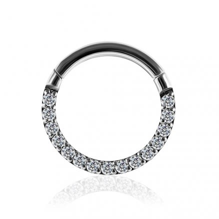 G23 Titanium Pave Crystal Seamless Hinged Clicker Segment Ring