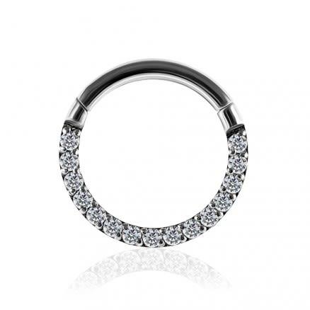 G23 Titanium Pave Crystal Seamless Hinged Clicker Segment Ring