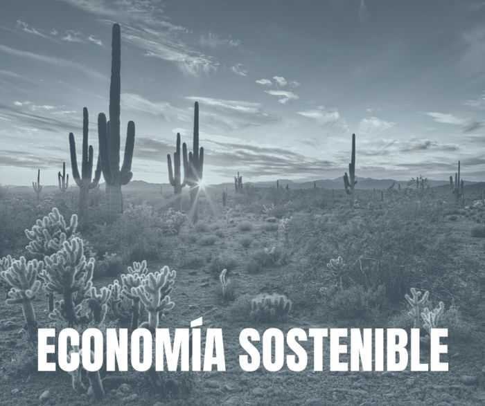 Suzanne Hug economia sostenible