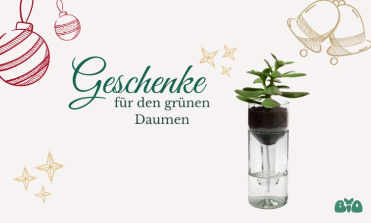 Geschenke für den grünen Daumen   Nachhaltige Geschenkideen Garten