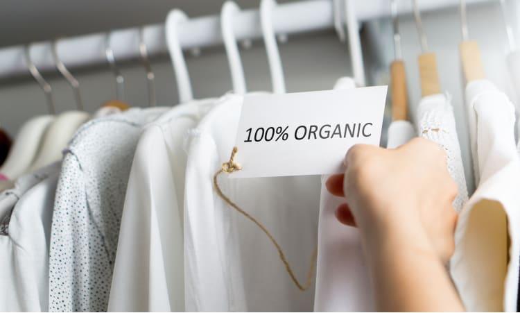 Solide ist das neue Cool | Konsumverhalten Textilien Kleidung Fair Fashion Nachhaltigkeit