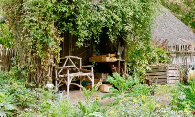 Bild zu Gartenweisheiten auf dem Prüfstand