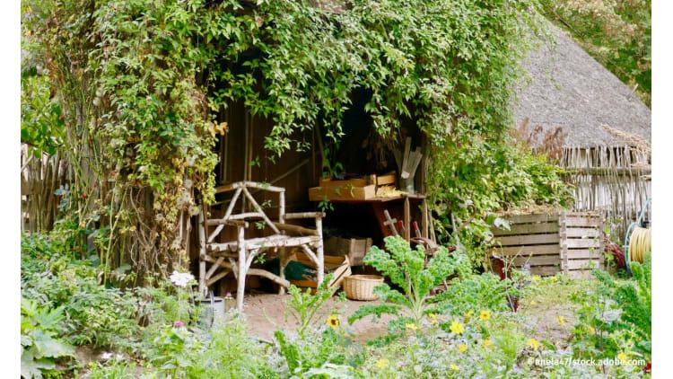 Gartenweisheiten auf dem Prüfstand | Garten