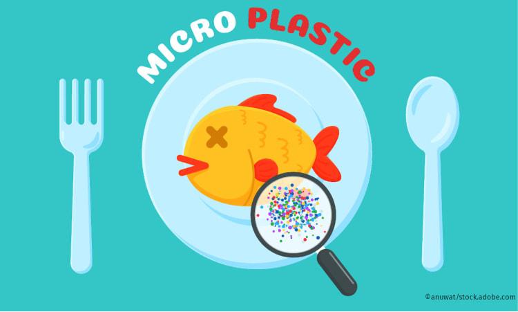 Was tun gegen Mikroplastik? | Plastikmüll Verschmutzung der Meere nachhaltig einkaufen