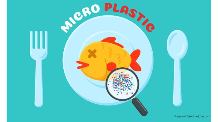 Was tun gegen Mikroplastik?   Plastikmüll Verschmutzung der Meere nachhaltig einkaufen
