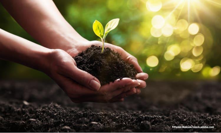 Wie Schwarzerde das Klima schützen kann | Garten Boden