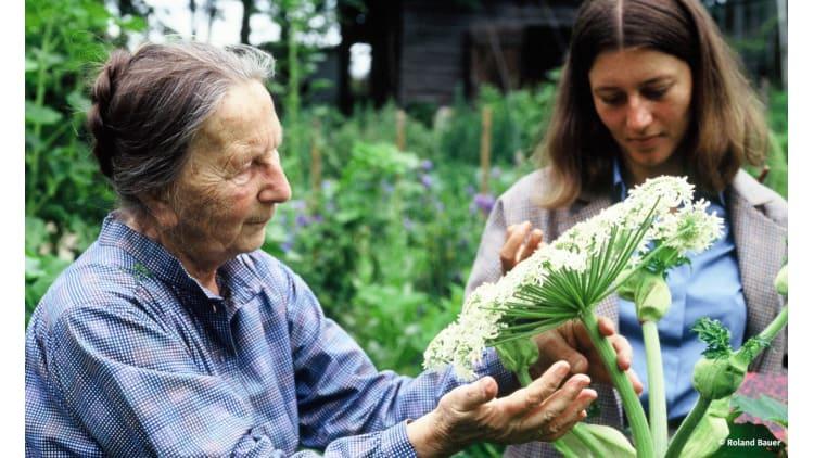 Mit einem guten Plan zu gesundem Gemüse | Garten
