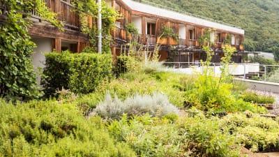 Bild zu Erholung im theiner's garten Bio-Hotel in Südtirol