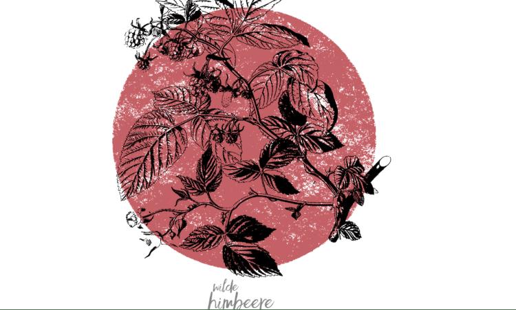 Die Kraft der Beeren | Kräuterkolumne Beeren Sommer Antioxidantien Himbeere Sanddorn Hagebutte Kräuter