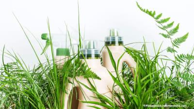 Bild zu Tipps für den umweltschonenden Frühjahrsputz