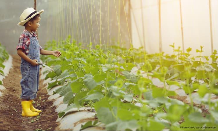 Ganzheitliche Landwirtschaft vom Acker bis zum Teller | Landwirtschaft Ernährung Agrarpolitik