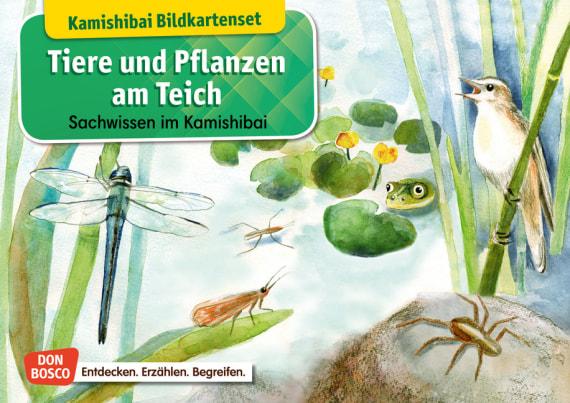 Tiere Und Pflanzen Am Teich Kamishibai Bildkartenset Entdecken Erzählen Begreifen Sachwissen Offizieller Shop Des Don Bosco Verlags
