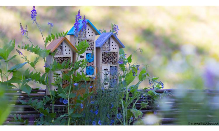Gärtnern für Insekten: Von Verstecken und Insektenhotels | Garten Insekten Biodiversität
