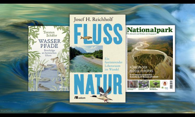 Gewässer im Klimawandel: 6 Lesetipps zu Renaturierung, Hochwasserschutz und mehr | Gewässerschutz Fluss Klimawandel Hochwasser Hochwasservorsorge Hochwasserschäden Renaturierung Landschaftsplanung Wasser Wasserrahmenrichtlinie Wasserökonomie Wasserwirtschaft Wasserpolitik